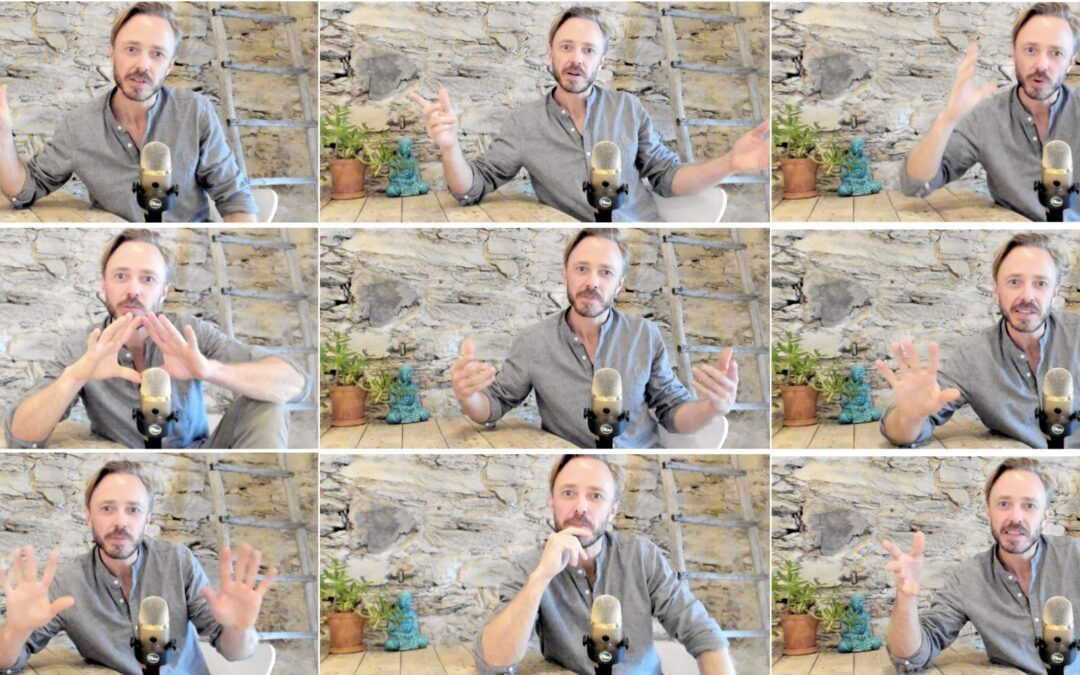 Icke Verbal Kommunikation i Videomöten. Hur och Varför?